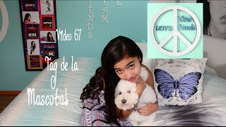 TAG DE LA MASCOTA Video 67 Xime Ponch
