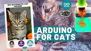 DIY Automatic Cat Feeder for Cute Cats, Kittens & Pets: සිංහලෙන් Programming Arduino With Scratch