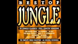 Best Of Jungle Volume Two