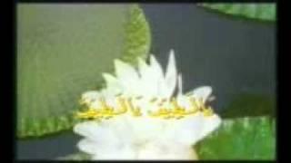 Zikir Munajat Part 3 / 4 - Astro Oasis