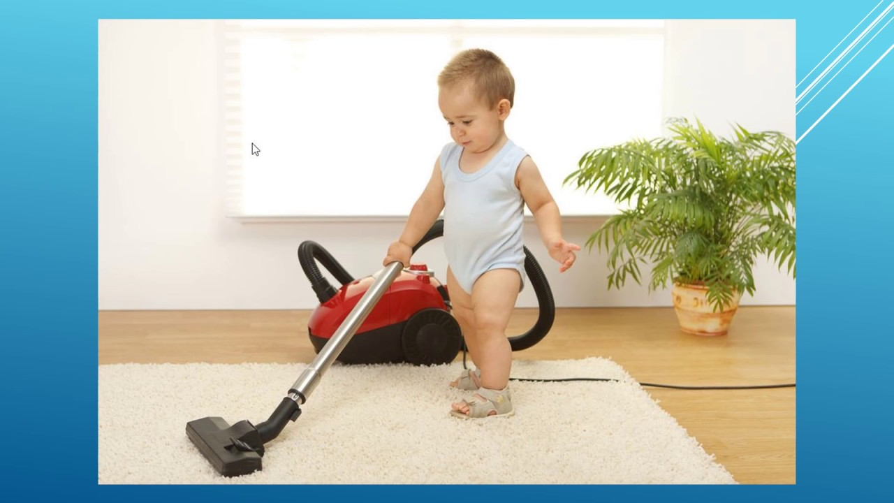 Best Carpet Cleaning Company in Sherwood Park Alberta ...