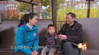 《远方的家》 20200528 长江行(98) 黄浦江畔 宜居家园| CCTV中文国际