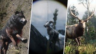 Red Dead Redemption 2 - Hunting the Legendary Wolf, Ram & Elk