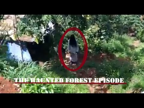 Download Real ghost activity in forest - MUST SEE The Haunting Video