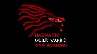 GW2 WvW - Haematic - FA : Ranger Solo Roaming