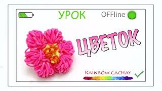Цветок. Плетение из резинок. Loom bands. Rainbow cachay.