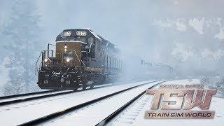 🔴 Lajwidło - Symulator maszynisty pociągu | Train Sim World 🚂🚃🚃