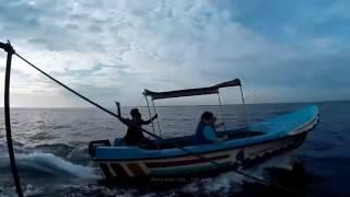 На Шри-Ланку Сами - фото охота на китов - платим по факту(Наше самостоятельное путешествие на Шри-Ланку. Самое мясо на нашем сайте http://samivkrym.ru/. А если глазки жалко..., 2016-10-14T02:56:38.000Z)
