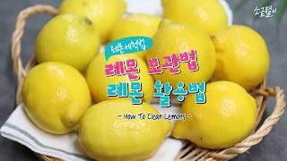 레몬 세척법, 보관법, 레몬껍질 활용법까지 완벽하게 (How to  clean Leomons)