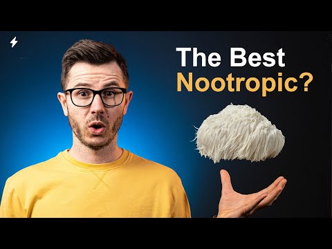 Lion's Mane Mushroom Review: Should You Supplement It?