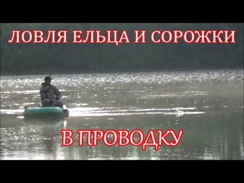рыбалка в проводку с лодки с кормушкой видео