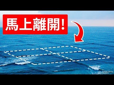在格狀波浪中游泳會有生命危險!