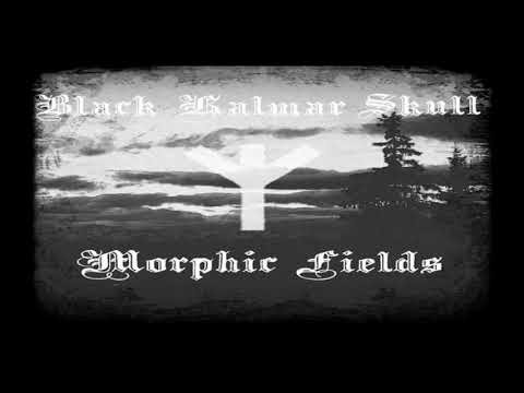 Black Kalmar Skull - Morphic Fields(2017)