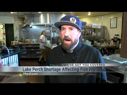 Lake Perch Shortage Affecting Fish Fry