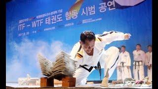 북한 태권도 시범단, 전주 공연 하일라이트