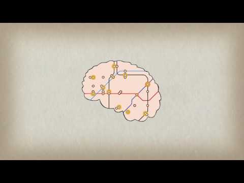 Learn how playing an instrument benefits the brain