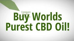 Where To Buy CBD Oil in Gainesville Florida | Buy Pure, Certified & Guaranteed.