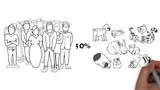 Сколько стоит содержать домашних животных