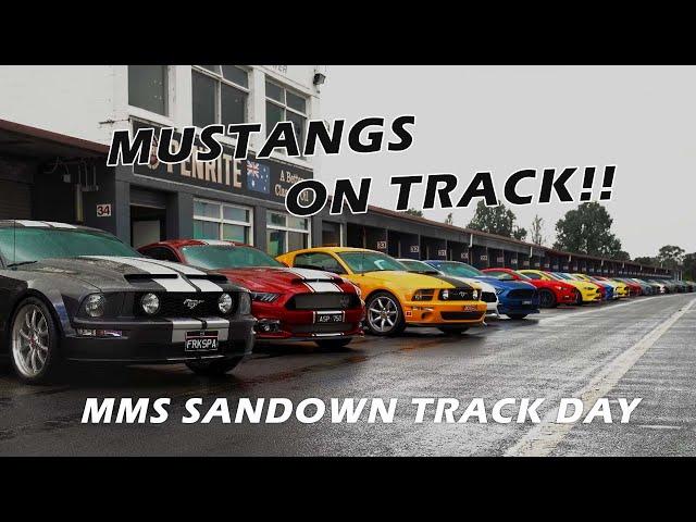 Mustangs on Track - 2021 Sandown Raceway