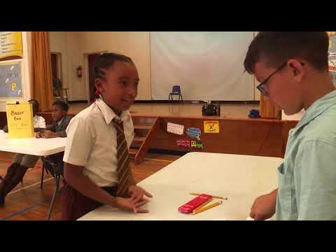 Somerset Primary School P6 Mock Elections
