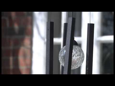Monet 17 in. Black Indoor Drum Shade Crystal Chandelier with Shade