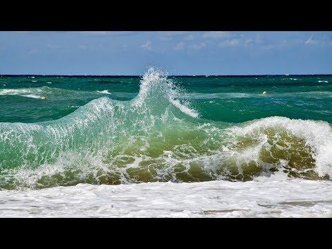 Шторм, змея на пляже и курортные будни (станица Благовещенская, Анапа) | VLOG  -- Лиза Коробкова