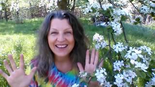 Plevel - zdraví z naší zahrady! + Recept