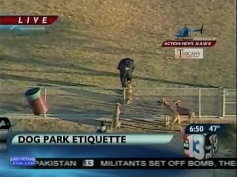 Dog Training: Dog Park Etiquette Training