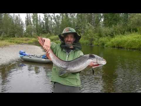 рыбалка река или рассказы