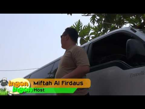 Ingon - Ingon MTA TV  Cacing Part 1/3