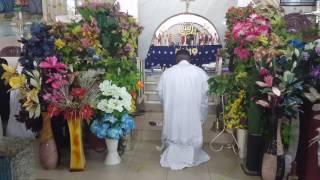 palm sunday 2017 c c c idunnu joshua parish 1