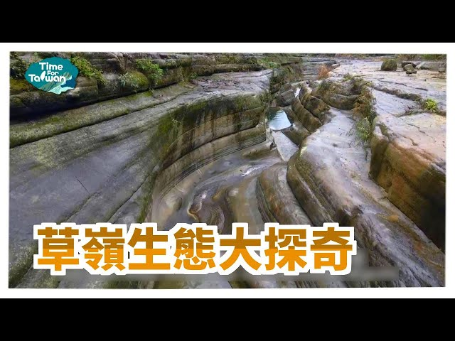 草嶺生態大探奇|Time for Taiwan - Taiwan Tourist Shuttle-Yunlin Caoling Route