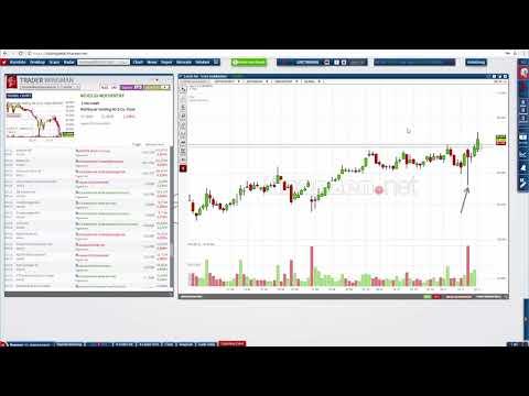Diskussion über spannende Trader Wingman Signale und neue Trading-Chance!