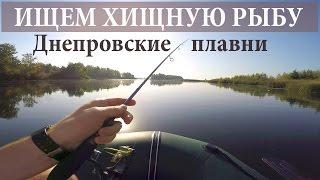 Рыбалка на Днепре - Киевская область(Отправились мы с тёской рыбу хищную искать. Несмотря на то, что осень, температура днем переваливала за..., 2015-09-22T13:48:11.000Z)
