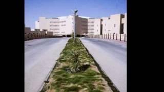 الحقيقة المرة في جامعة القصيم