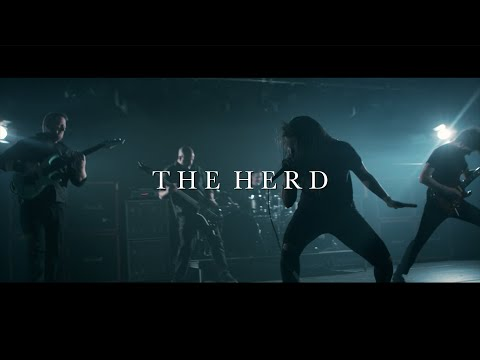 monochromatic-black---the-herd-(official-video-2018)