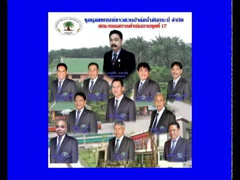 ชุมนุมสหกรณ์ชาวสวนปาล์มน้ำมันกระบี่ จำกัด  8 กันยายน 2558