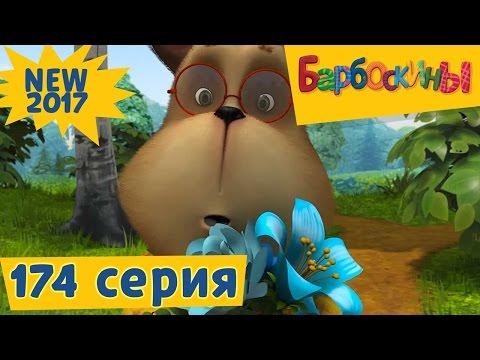 Барбоскины - 174 серия 💞 Генкина любовь 💞  Новая серия 2017 года! Премьера