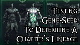 Testing Gene-Seed To Determine A Chapter's Lineage - 40K Theories