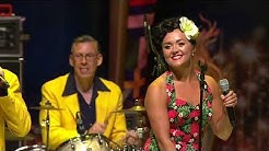 """The Jive Aces Live - """"You Got What It Takes"""""""