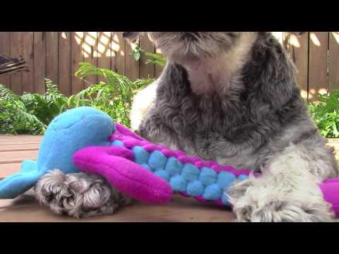 kong-tough-animal-braidz-dog-toys