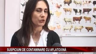 Suspiciuni de contaminare cu aflatoxina