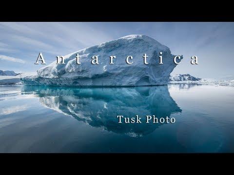 Tusk Photo - Antarctica Photo Tour