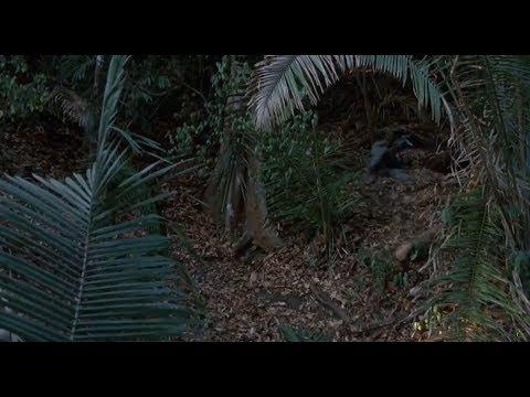 Predator - You're Ghosting Us Motherfucker [HD]