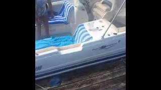 German Shepherd Boat Jump