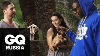 Самые дорогие вещи в мире: 2 Chainz приручает щенков за $100 000