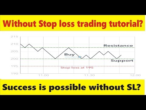 Without Stop loss Success is possible in Forex Trading Business? Tani tutorial in Urdu and Hindi thumbnail