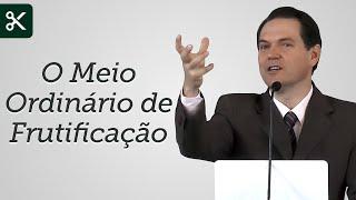 O Meio Ordinário de Frutificação (Trecho) - Sérgio Lima