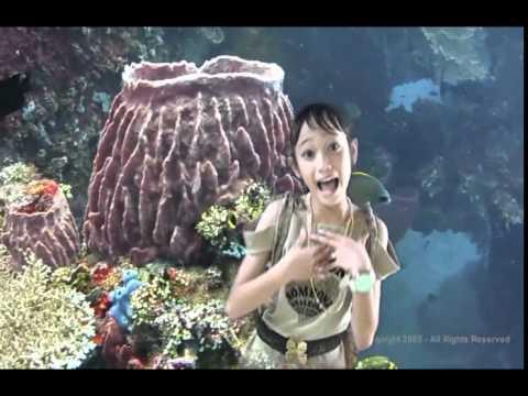 LAGU DISCO ANAK anak terbaru CINTA INDONESIA