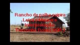 tiaosinho rosa - rancho de palha.web_1.wmv